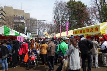 武蔵野桜まつりに商店会も出店します。